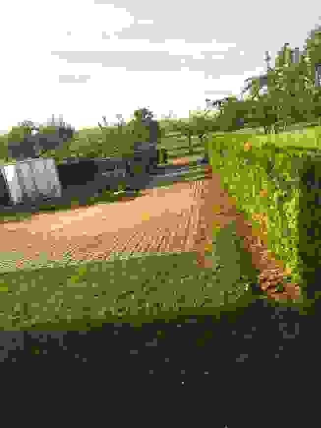 Garten Ohne Rasen Alternativen Zum Rasen Haus Design Ideen