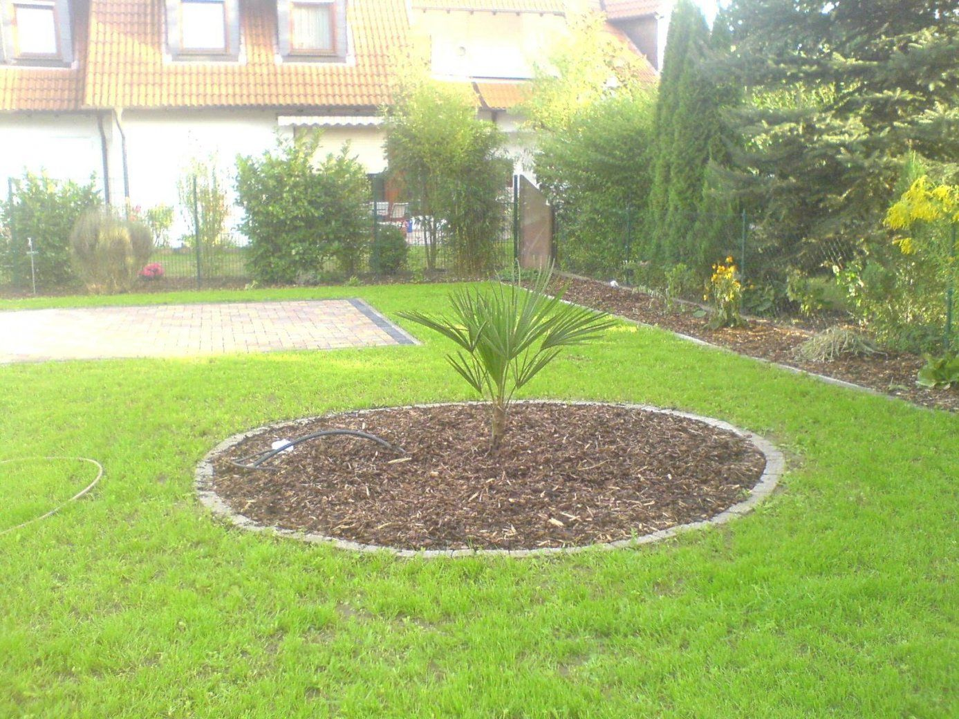 Garten Ohne Rasen Schön Neueste Garten Ohne Rasen Alternativen Zum von Garten Ohne Rasen Alternativen Zum Rasen Photo