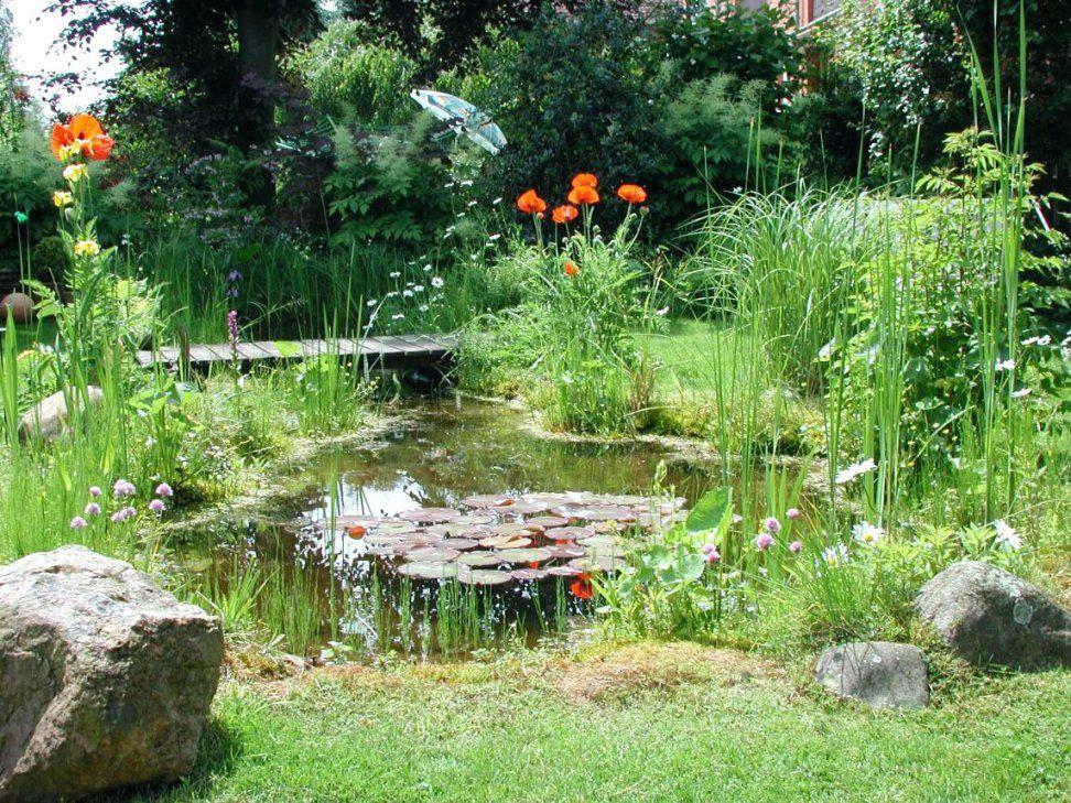 Gartenteiche Schwimm Und Gartenteiche Gartenteiche Aus Kunststoff von Gartenteiche Aus Kunststoff Gebraucht Bild