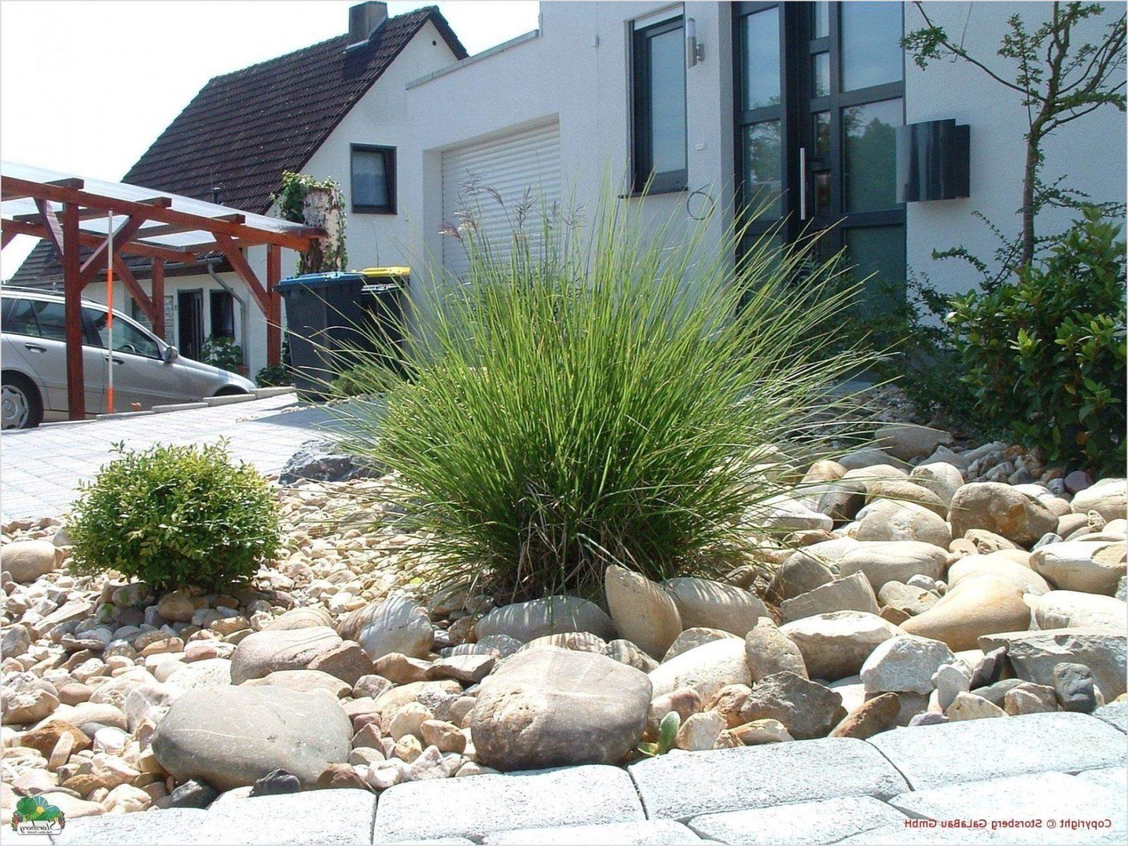 Gestalten Mit Stein Im Garten Frisch Garten Neu Gestalten Mit Kies von Vorgarten Moderne Gestaltung Kies Bild