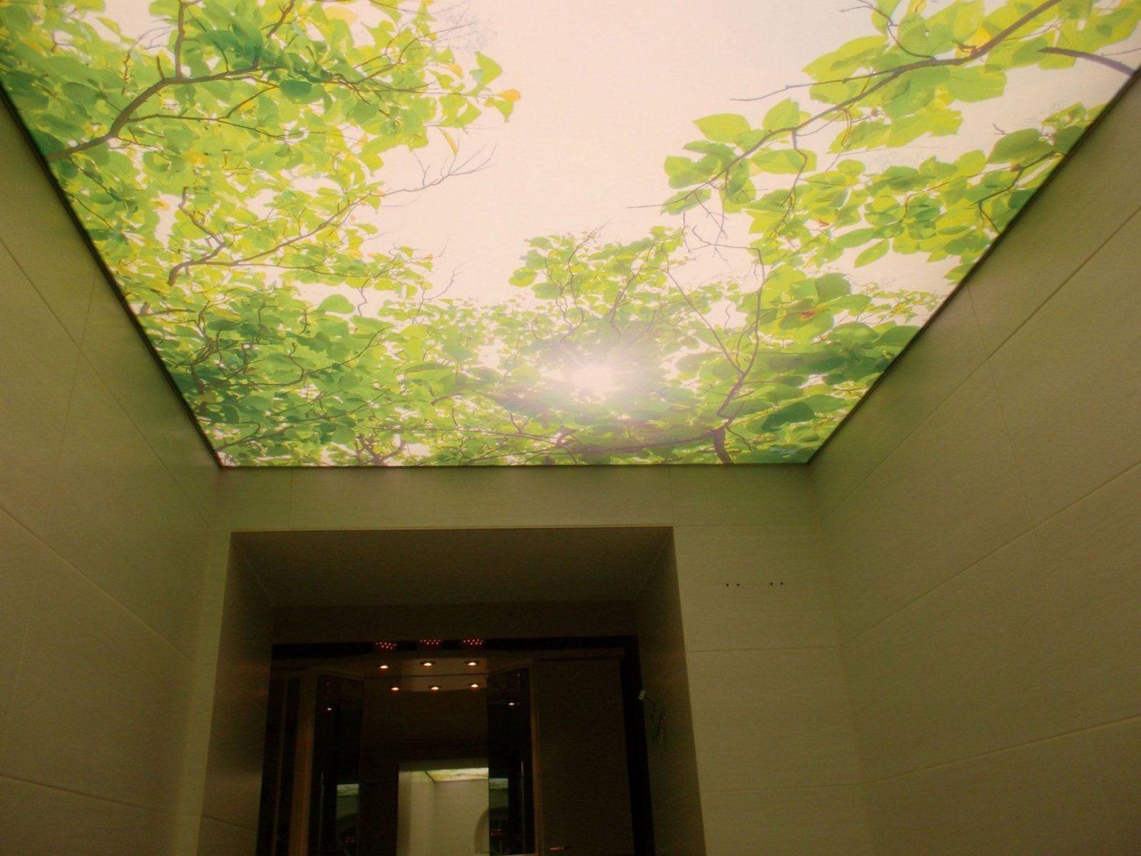 Gewebe Spanndecke  Lichtdecke Mit Druck Von Planung Montage Von von Led Lichtdecke Selber Bauen Bild