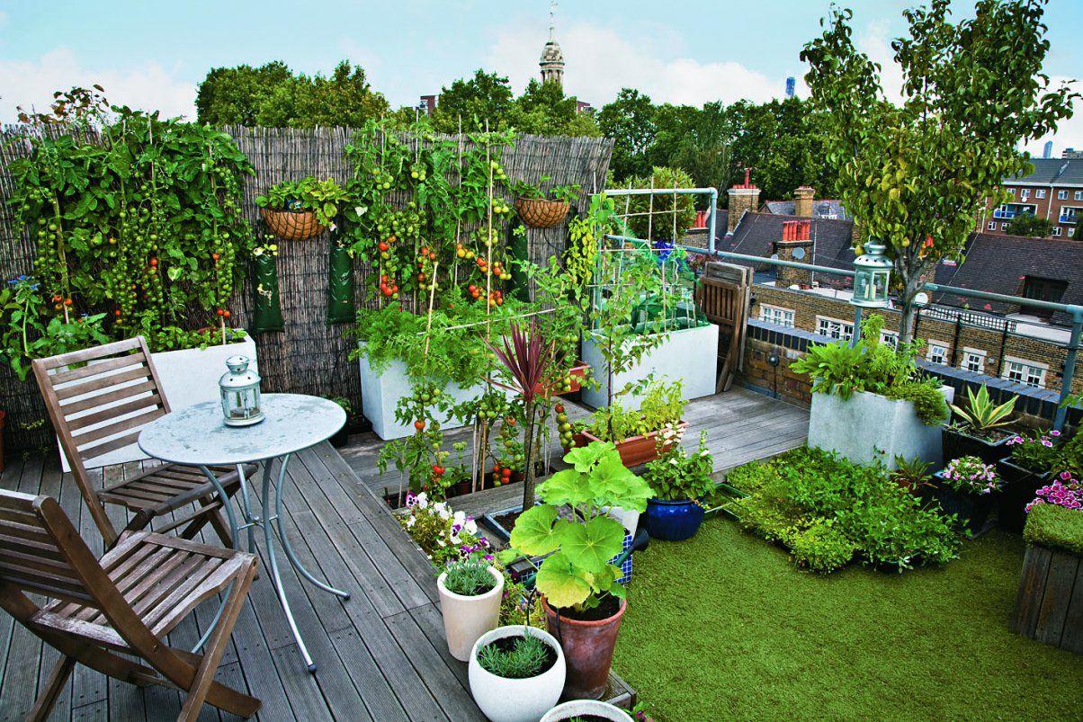 Handbuch Kleine Gärten von Kleine Gärten Gestalten Bilder Photo
