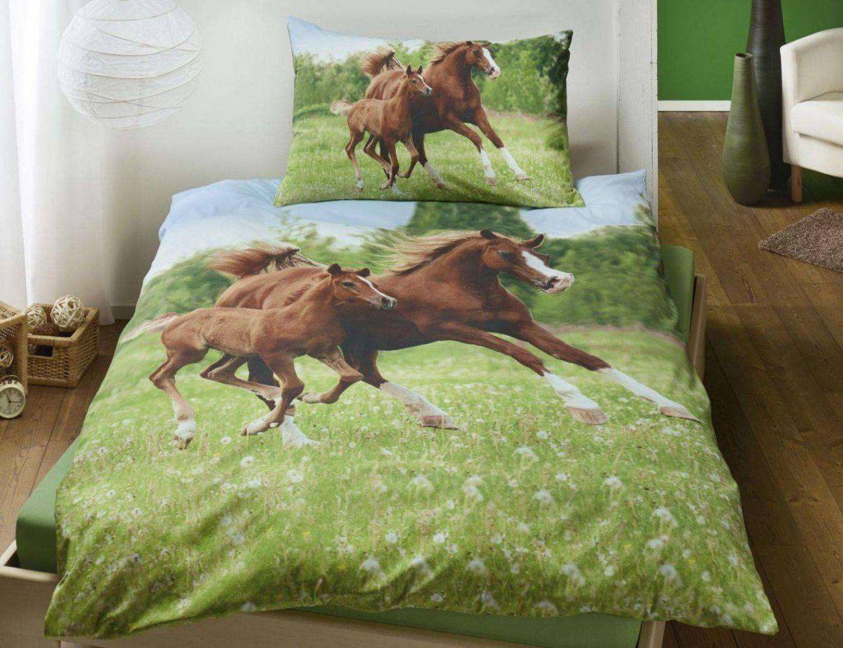 Herding Bettwäsche Pferde Bettwäsche Wildpferde Real Von Pferde von Herding Bettwäsche Pferd Photo