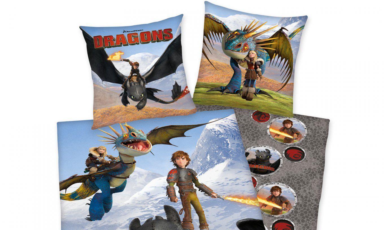 Herding Dragons Renforcé Kinderbettwäsche  Matratzen Discount von Drachen Zähmen Leicht Gemacht Bettwäsche Bild