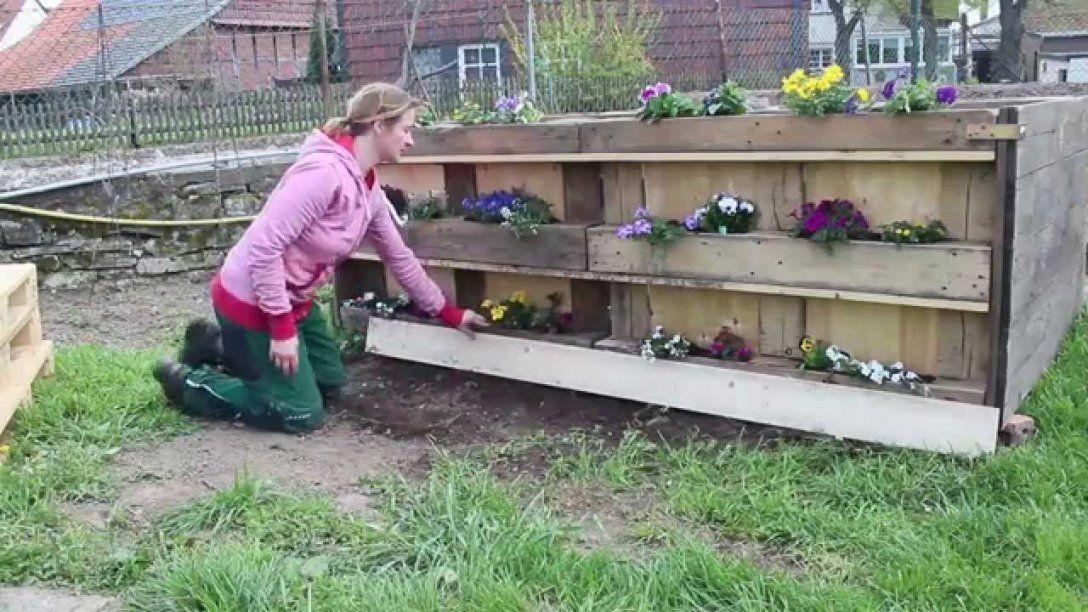 Hochbeet Aus Europaletten 20 Mit Blumenkästen  Youtube von Sichtschutz Aus Paletten Bauen Photo