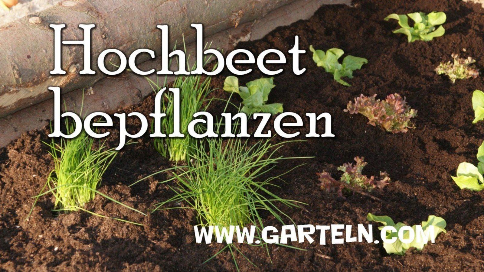 Hochbeet Bauen Und Bepflanzen  Teil 2  Youtube von Hochbeet Bepflanzen Erstes Jahr Photo