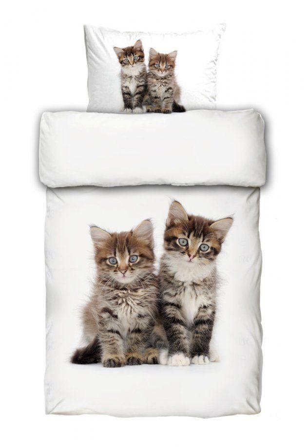 Katzen Mehr Als 10000 Angebote Fotos Preise ✓  Seite 24 von Bettwäsche Katzenmotiv Fotodruck Photo