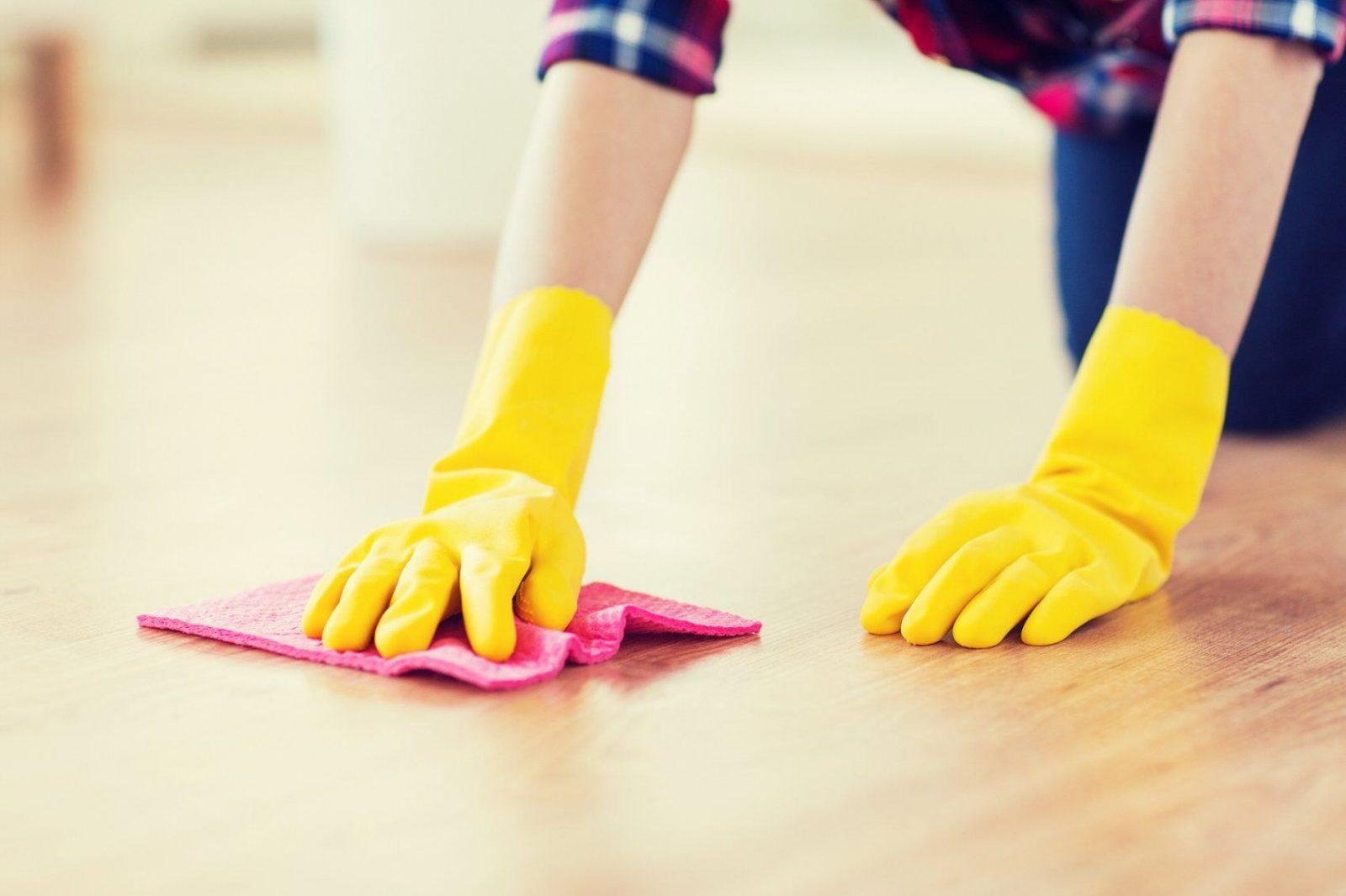 Katzenurin Entfernen  Das Hilft Gegen Geruch Und Flecken  Smart von Katzenurin Aus Teppich Entfernen Bild
