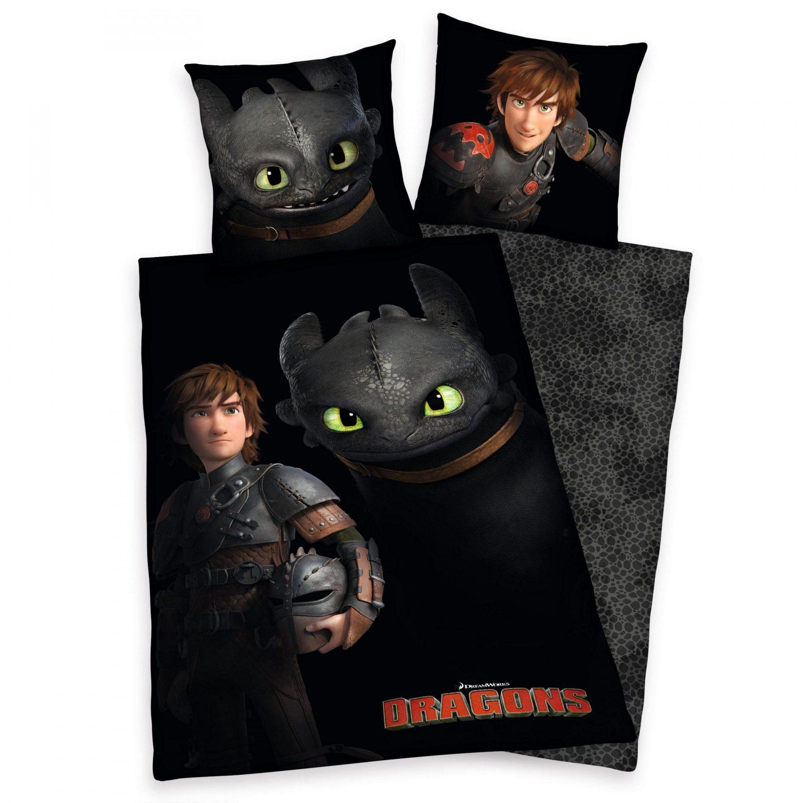 Kinderbettwäsche Dragons Dragons Ohnezahn Mit Hicks Der Hühne von Drachenzähmen Leicht Gemacht Bettwäsche Bild