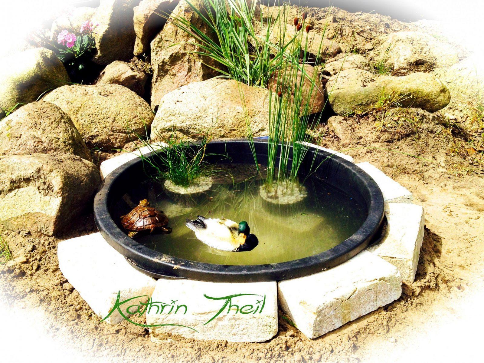 Kleine Brunnen Selber Bauen Igelscout Info Mit Brunnen Selber Machen von Kleinen Brunnen Selber Bauen Bild