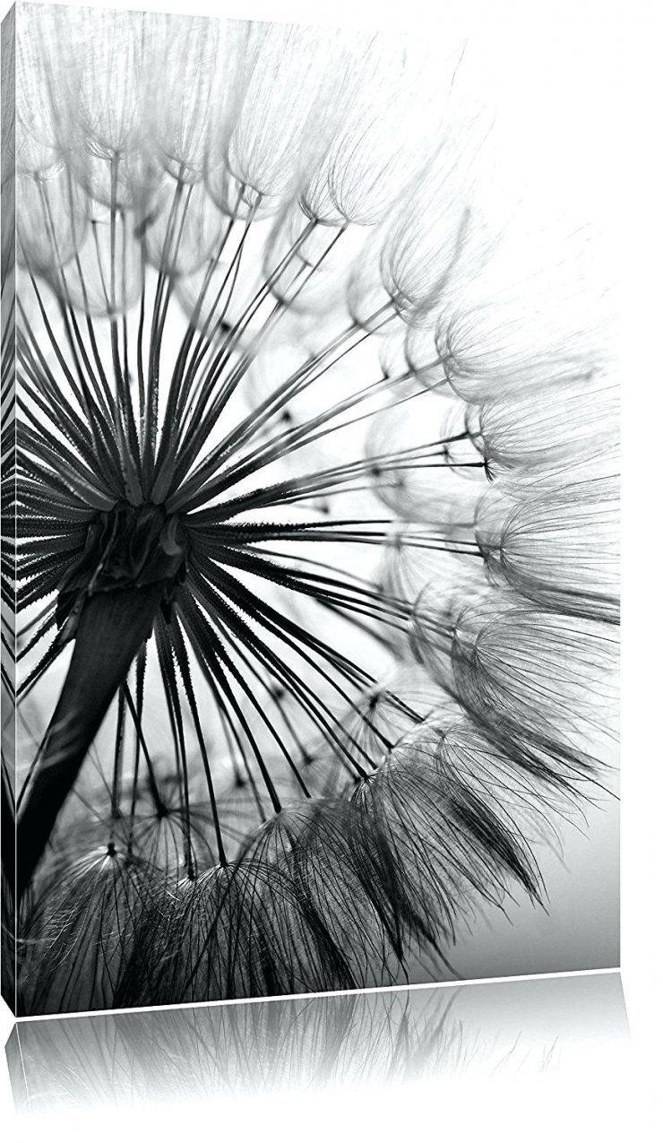 Leinwandbilder Schwarz Weiss Herrlich Schone Pusteblume Schwarzweia von Leinwandbilder Schwarz Weiß Xxl Bild