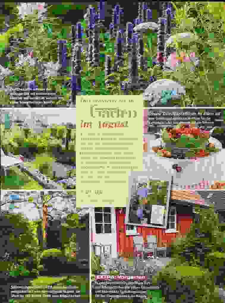 Mein Schöner Garten 7 2017 Zeitungen Und Zeitschriften Ist von Mein Schöner Garten Lidl Bild