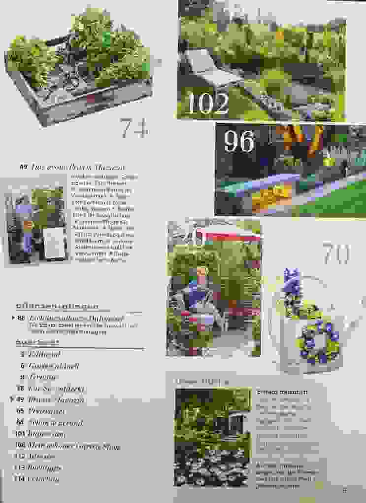 Mein Schöner Garten 8 2017 Zeitungen Und Zeitschriften Ist Das Beste von Mein Schöner Garten Lidl Photo
