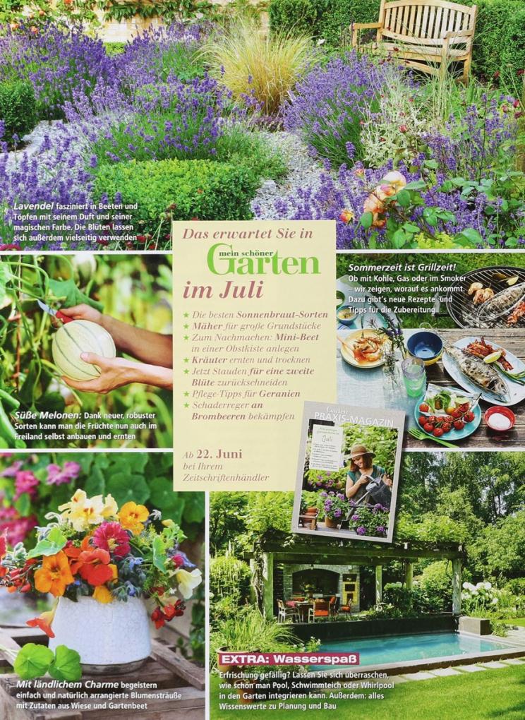 Mein Schöner Garten Online Mein Sch Ner Garten 7 2017 Zeitungen Und von Mein Schöner Garten Deko Bild