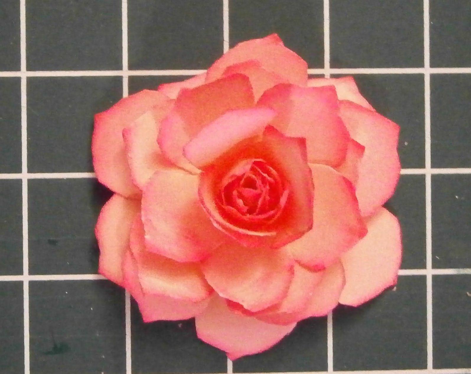 Muttertag Eine Papier Rose Selber Basteln  Youtube von Rose Basteln Papier Anleitung Photo