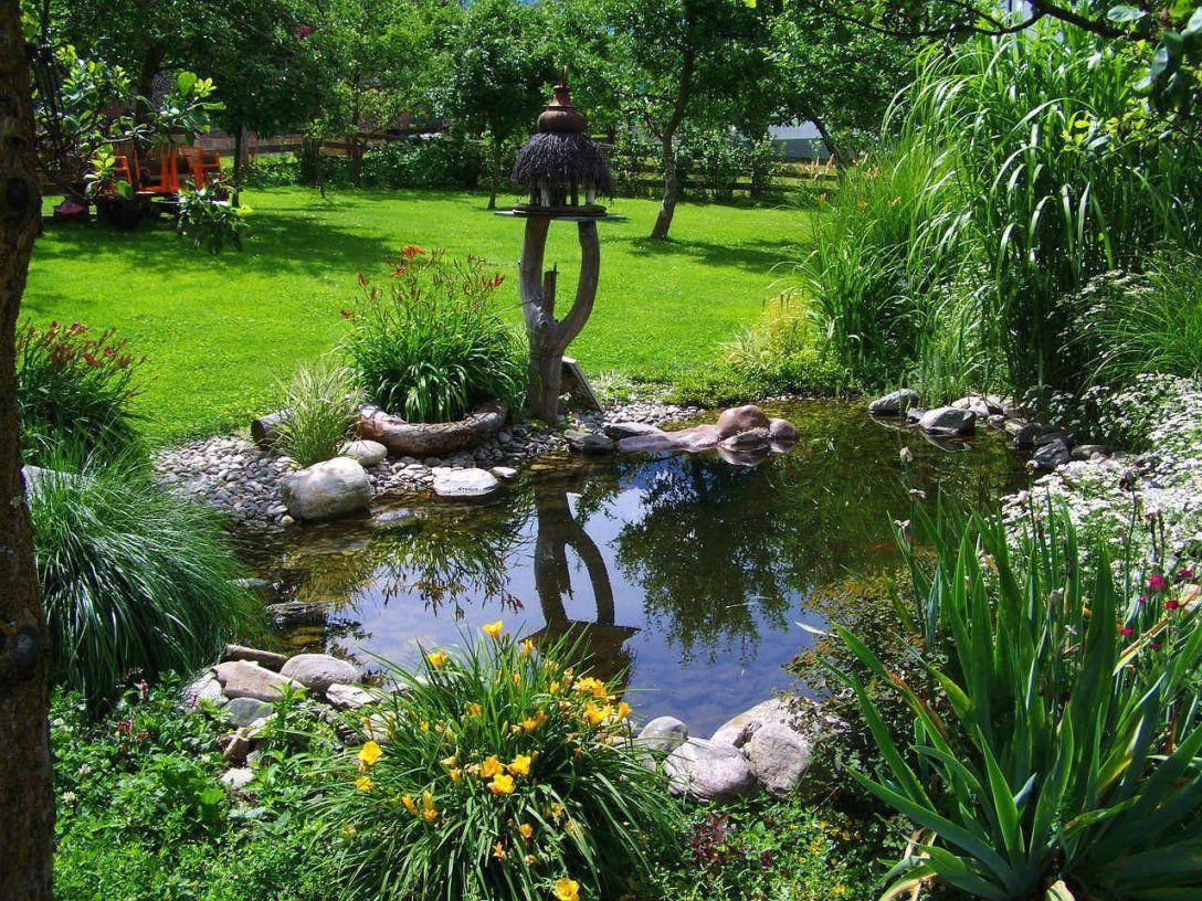 Naturgarten Anlegen Bepflanzen Gestalten Mit Gartengestaltung von Naturgarten Anlegen Bepflanzen Gestalten Bild