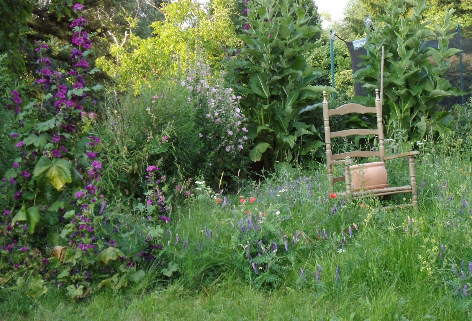 Naturgarten  Garten  Pinterest  Naturgarten Geheime Gärten Und von Naturgarten Anlegen Bepflanzen Gestalten Photo