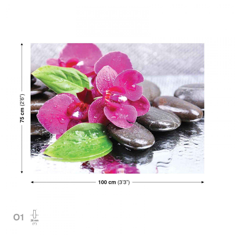 Orchideen Bilder Auf Leinwand Mit Blumen Steine Rosa Leinwand Bilder von Orchideen Bilder Auf Leinwand Bild