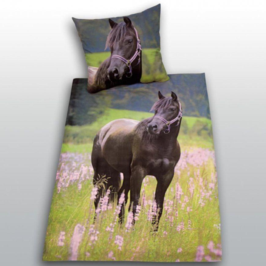 Pferde Bettwäsche Biber  My Blog von Bettwäsche Pferde Fotodruck Bild