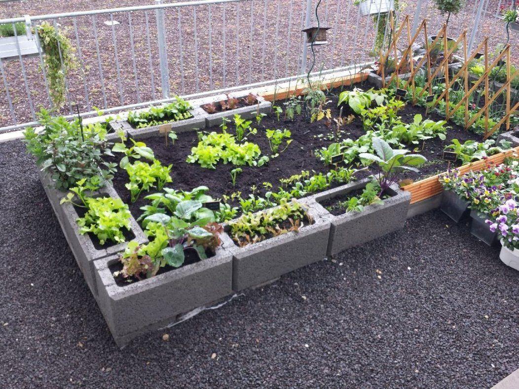 Pflanzsteine Setzen 20 Wunderbare Ideen  Pflanzsteine Setzen von Garten Gestalten Mit Pflanzsteinen Photo
