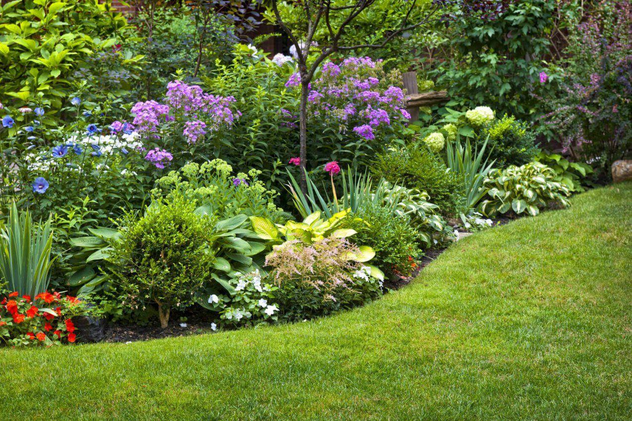 Pflegeleichter Garten Ein Garten Für Faule von Pflegeleichte Pflanzen Für Den Vorgarten Bild
