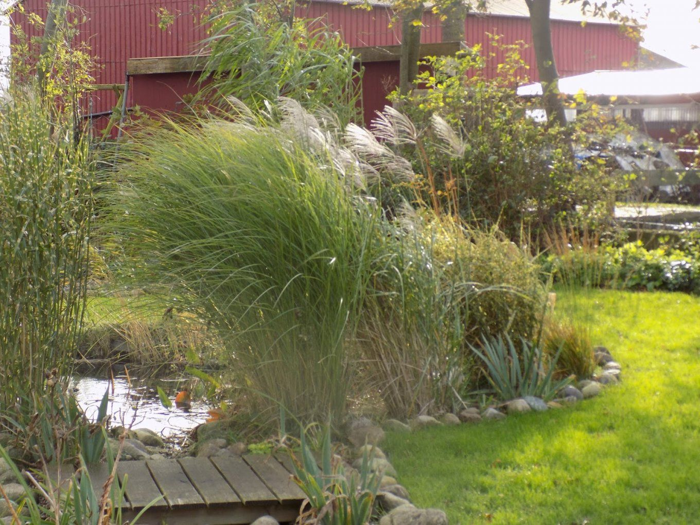 Schön Gartengestaltung Mit Steinen Und Gräsern Modern Ideen von Gartengestaltung Mit Steinen Und Gräsern Photo