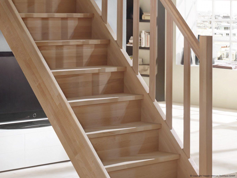 Schuhregal Unter Treppe Selber Bauen Mit Beste Von Regal von Regal Treppe Selber Bauen Bild