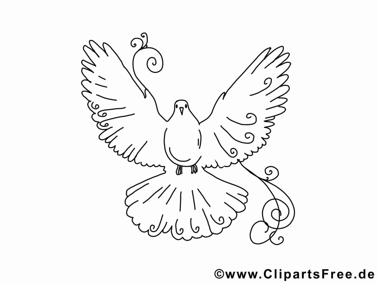 Selber Malen Vorlagen Vogel Taube Avec Bilder Zum Et 20150510 von Bilder Selber Malen Vorlagen Bild