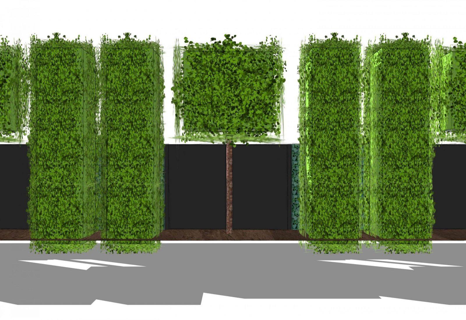 Sichtschutzhpl Heckeamlaufendenmeter Spalierbäume Und von Schmale Hecke Als Sichtschutz Photo
