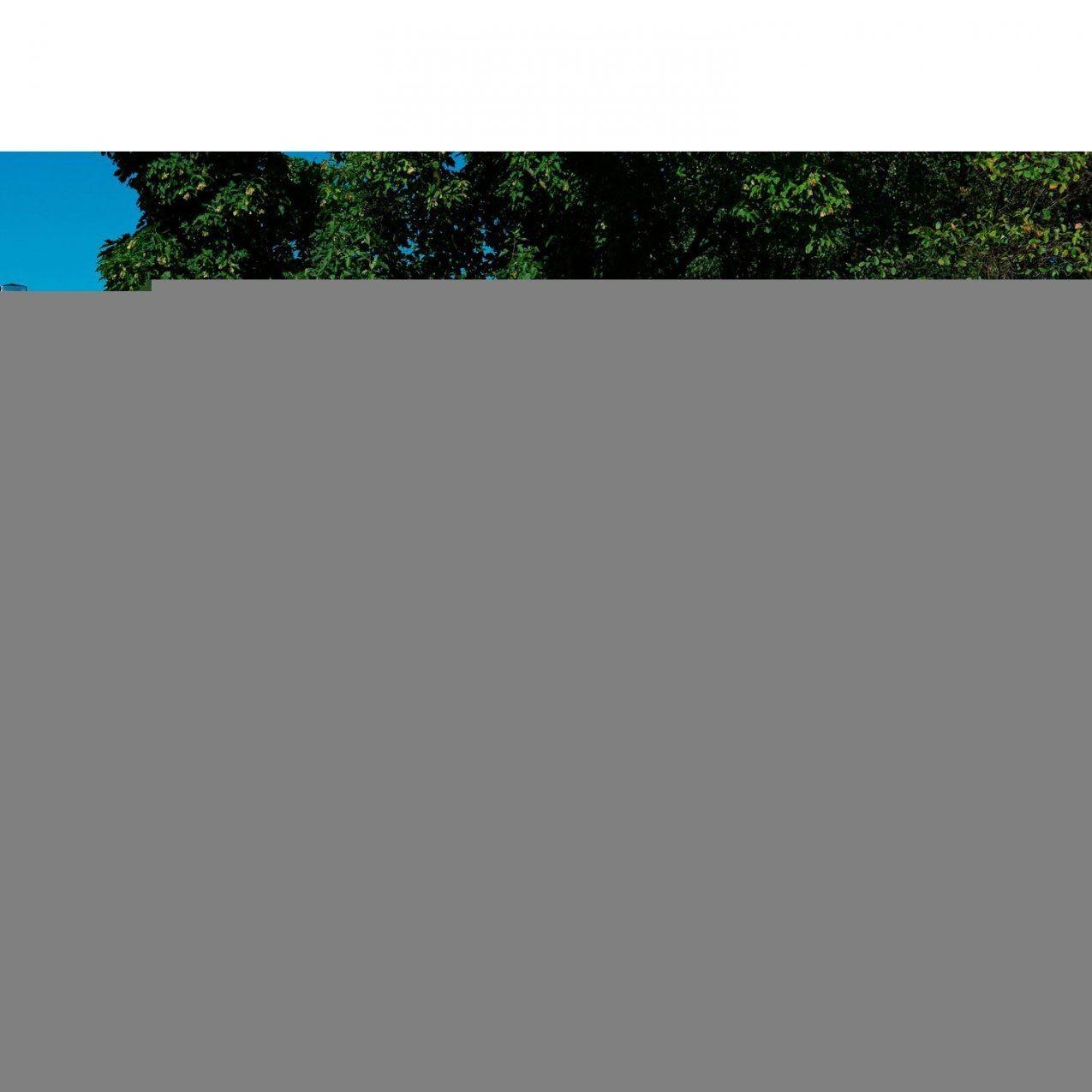 Sichtschutzzaunelement Jutland Larche Natur 178 Cm X 178 Cm Kaufen