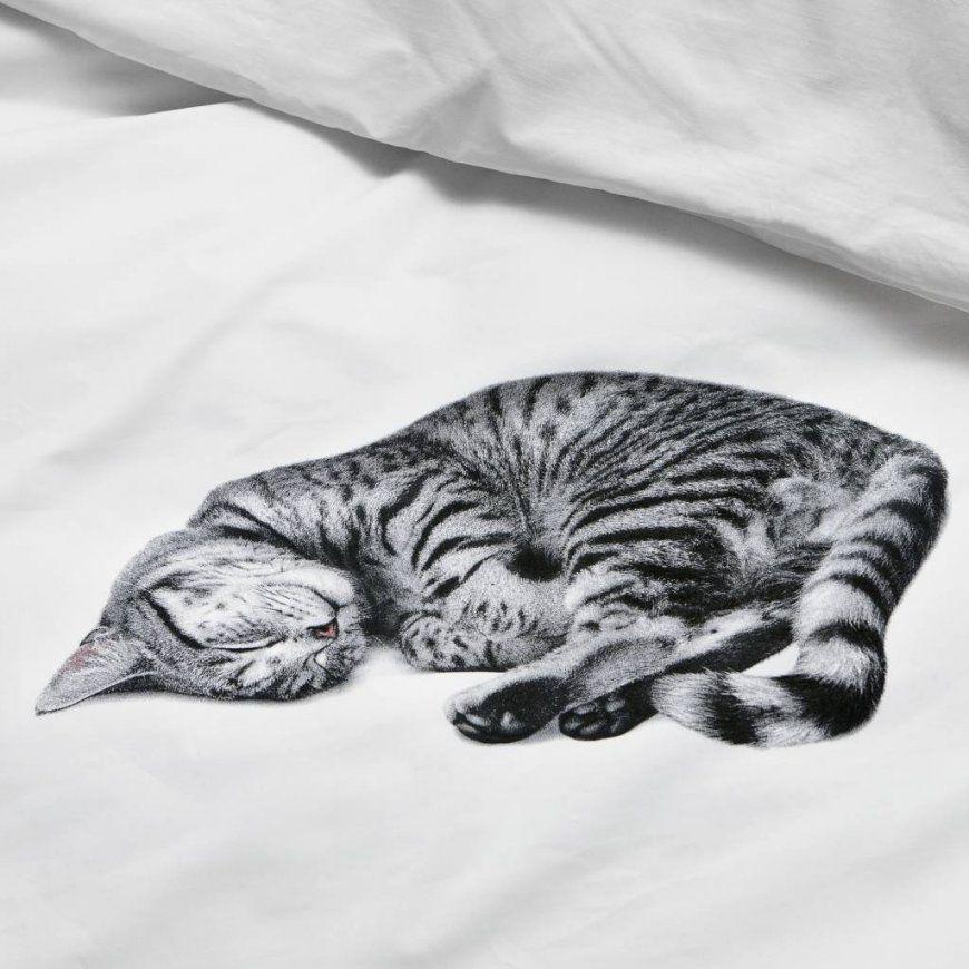 Snurk Bettwäsche Katze Ollie Weiß In 3 Größen  Lefliving von Bettwäsche Katzenmotiv Fotodruck Photo