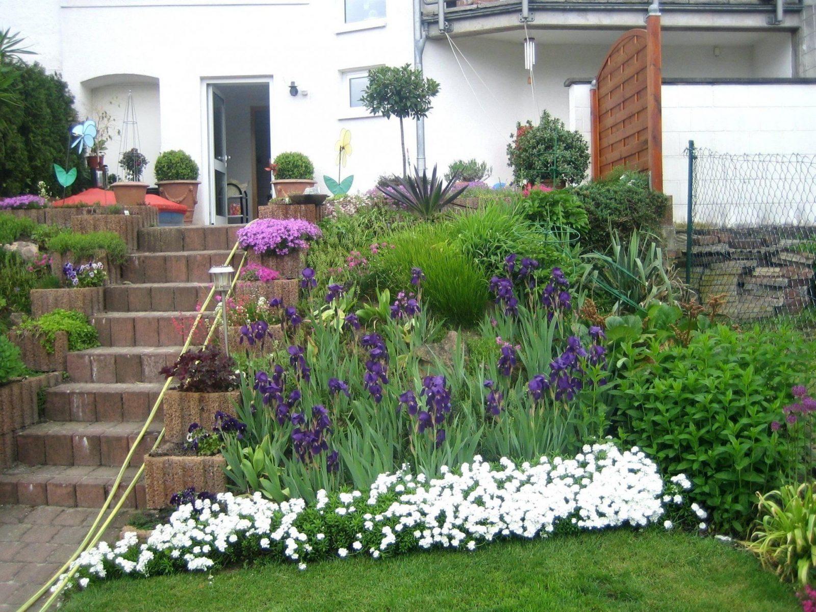 Spannende Vorgarten Modern Pflegeleicht Pflanzen Vorgarten Was Soll von Pflegeleichte Pflanzen Für Den Vorgarten Photo