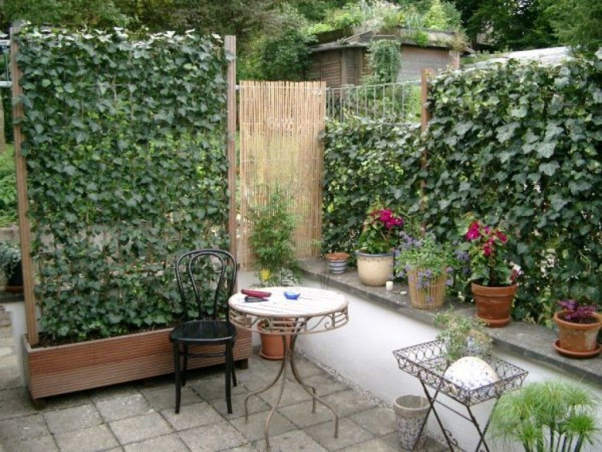 Terrassenumrandung Pflanzen Neu Gruner Sichtschutz Terrasse von Sichtschutz Für Terrasse Pflanzen Photo