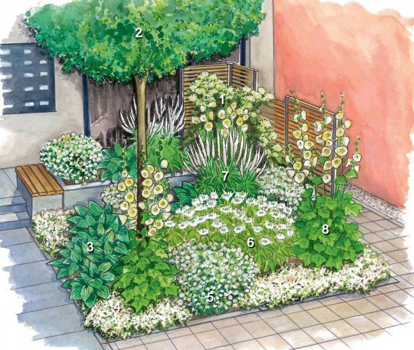 Vorgarten  Gestaltungsideen Pflanzen Und Tipps  Haus Gestalten von Pflegeleichte Pflanzen Für Den Vorgarten Bild