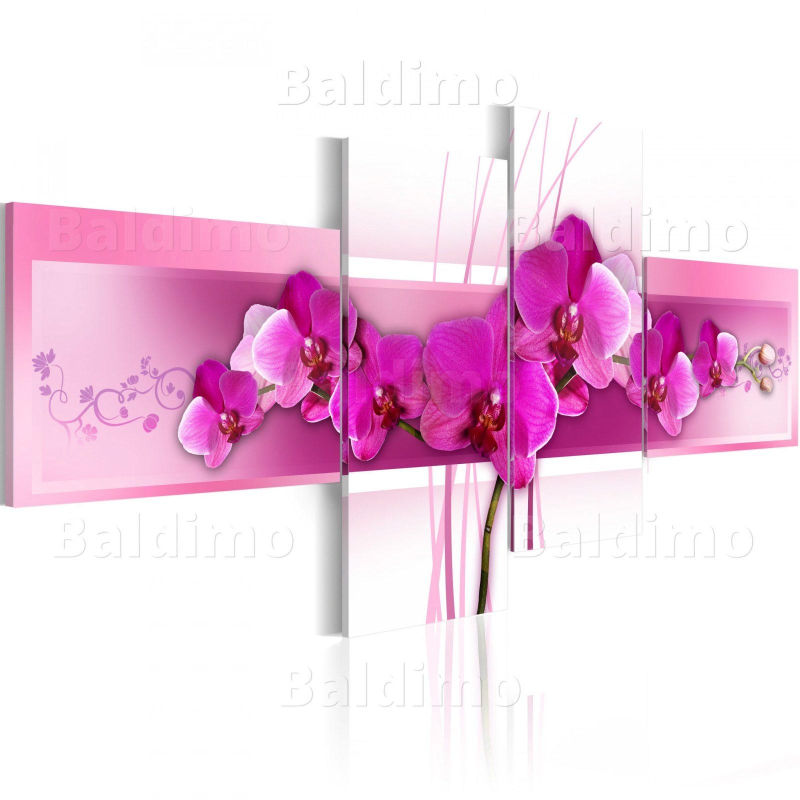 Wandbilder Xxl Blumen Orchidee Leinwand Bilder 4 Teilig Wohnzimmer Von  Orchideen Bilder Auf Leinwand Photo