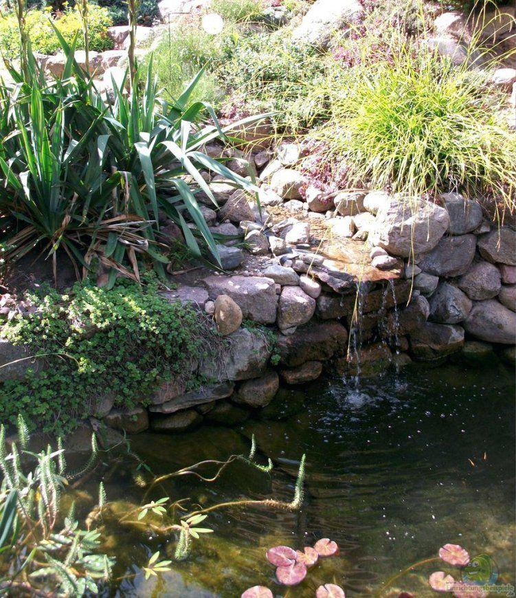 Wasserfall Gartenteich Verwunderlich Bauanleitung Selber Bauen Diy von Wasserfall Garten Bauen Anleitung Photo