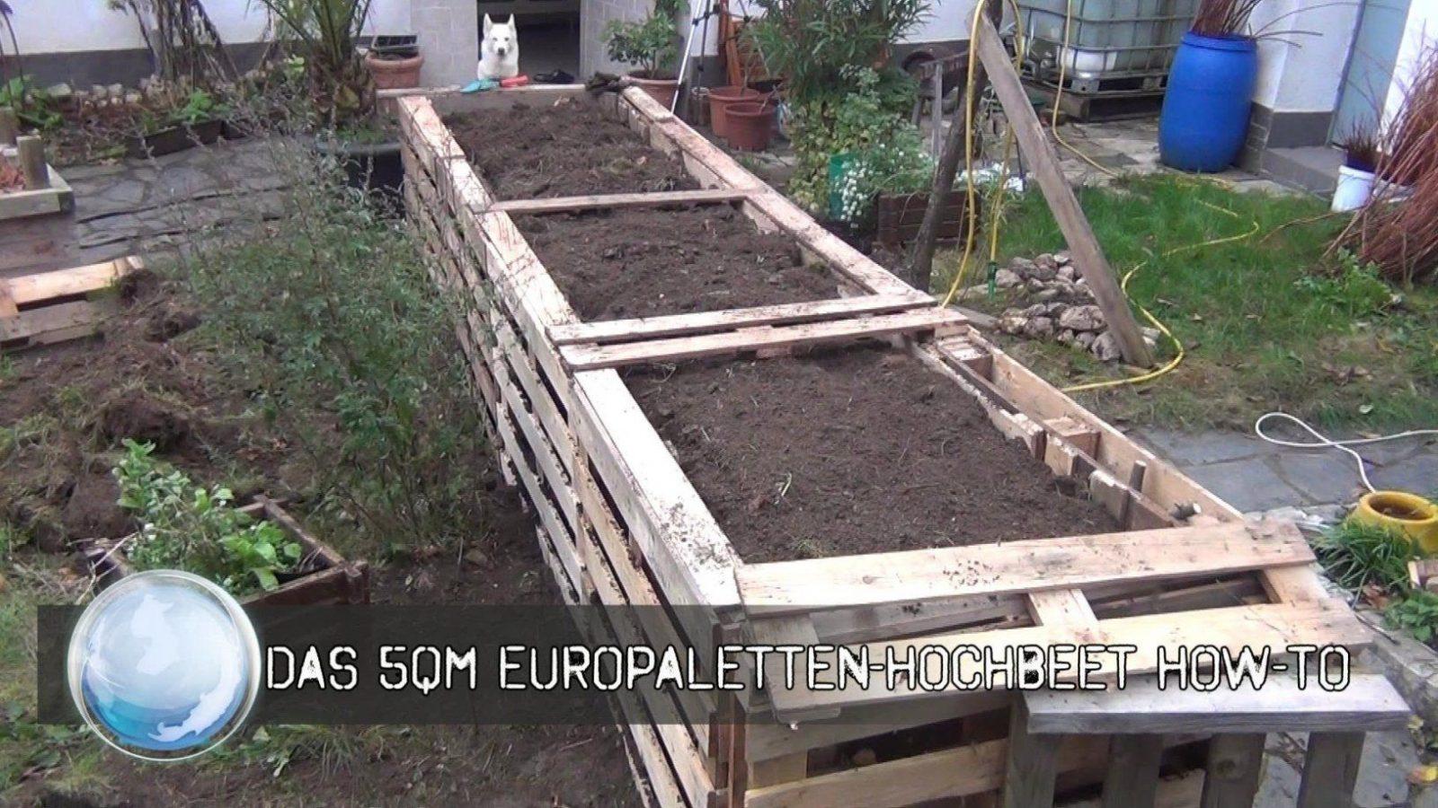Wunderschöne Hochbeet Selber Bauen Aus Paletten Das 5Qm Europaletten von Hochbeet Selber Bauen Youtube Bild