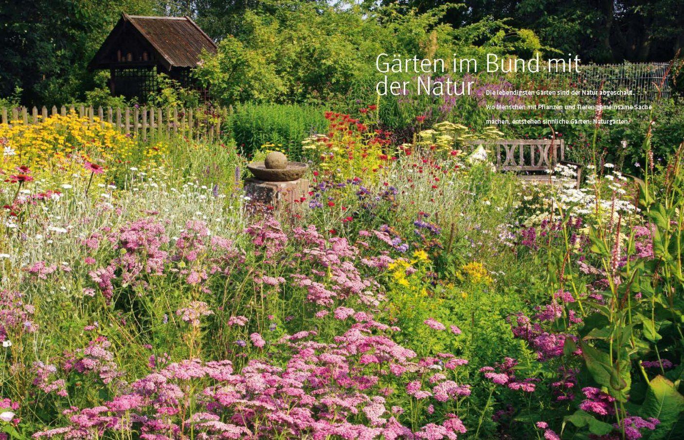 Zeitgenössisch Naturgarten Anlegen Von Der Umwelt Inspiriert Bauen von Naturgarten Anlegen Bepflanzen Gestalten Bild