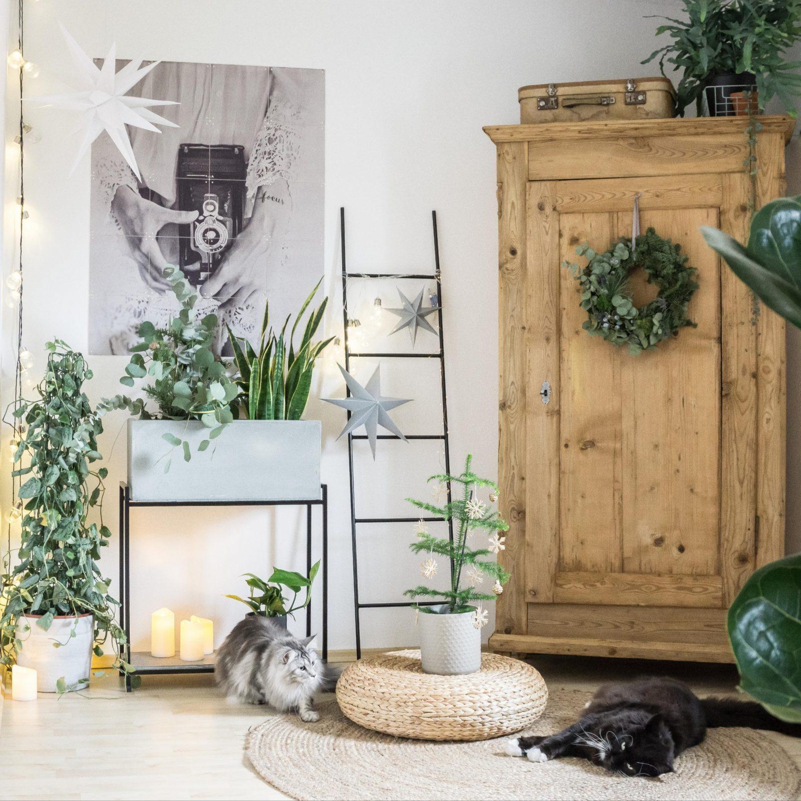 Wohnzimmerdekoideen Mach Es Dir Gemütlich von Dekoration Wohnzimmer Ideen Photo